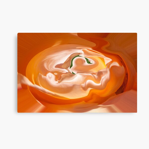orange light and shade Canvas Print