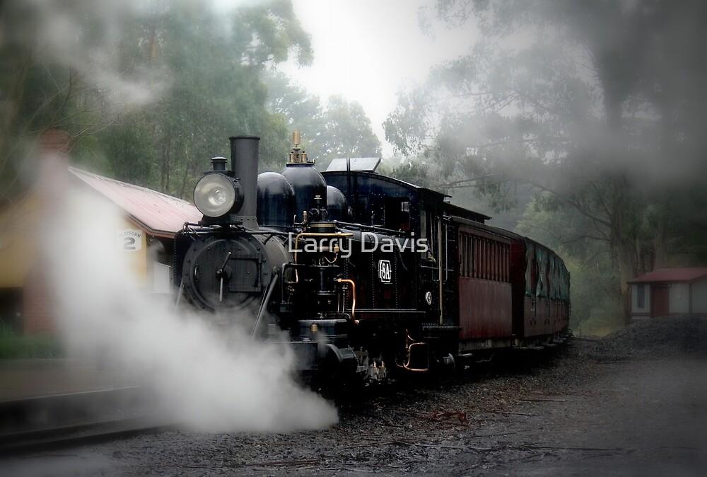 Billy in the Mist. by Larry Davis