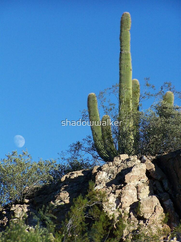 Arizona Moon by shadowwalker