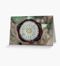 Genetic Engineering Greeting Card