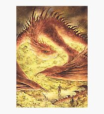 SLEEPING SMAUG Photographic Print