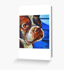 Classy Hank the BOSTON TERRIER Greeting Card