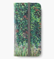 Vineyard Door iPhone Wallet/Case/Skin