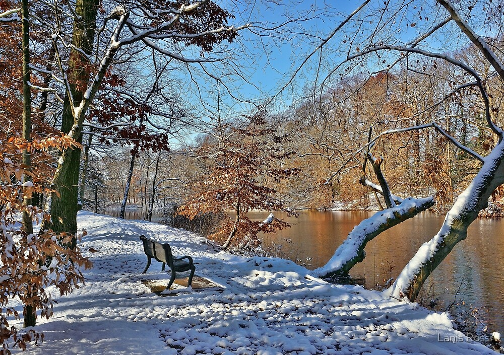 Winter Serenity by Lanis Rossi