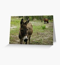 Donkey and Nugget Greeting Card