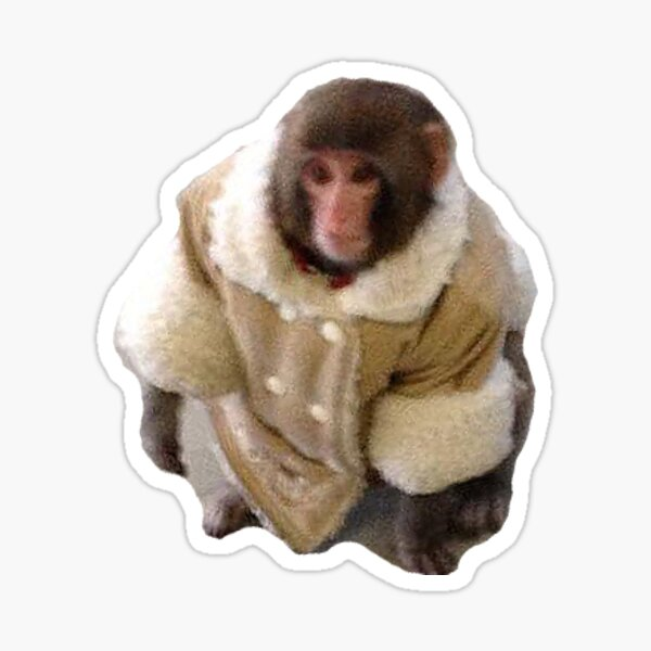 Stylish Yet Illegal Monkey Found Roaming Ikea Meme Sticker Sticker