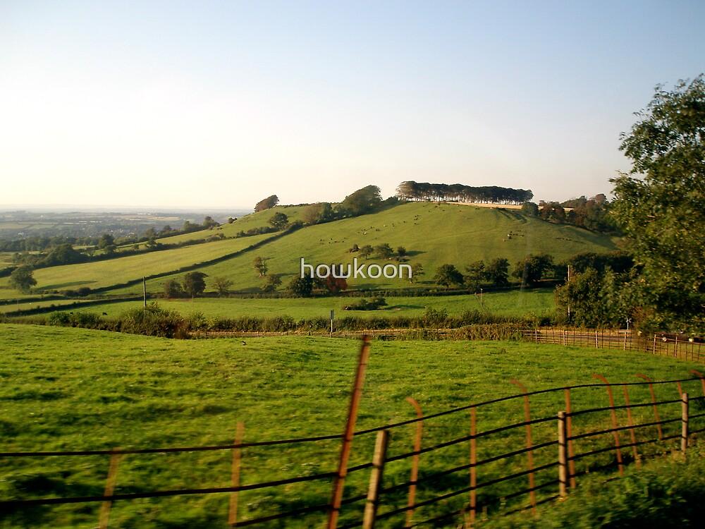Beautiful Landscape by howkoon
