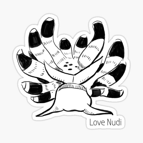 Nudi Sunrise Sticker
