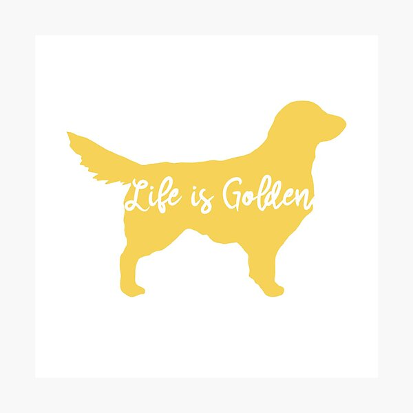 Life is Golden Photographic Print