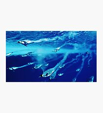 The ocean, the meaning of it all Photographic Print