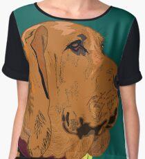 Bloodhound Chiffon Top