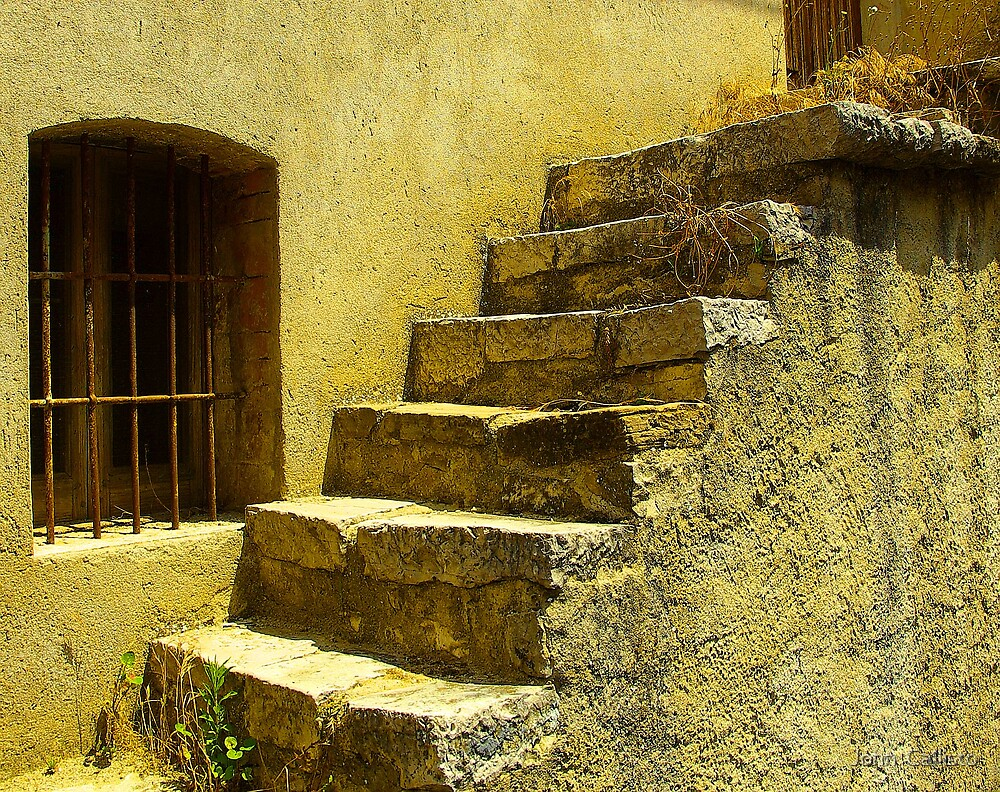 Steps To Cell by John  Callisto