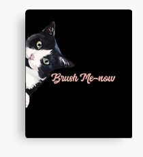 "Funny Cat ""Brush Me-now"" Canvas Print"