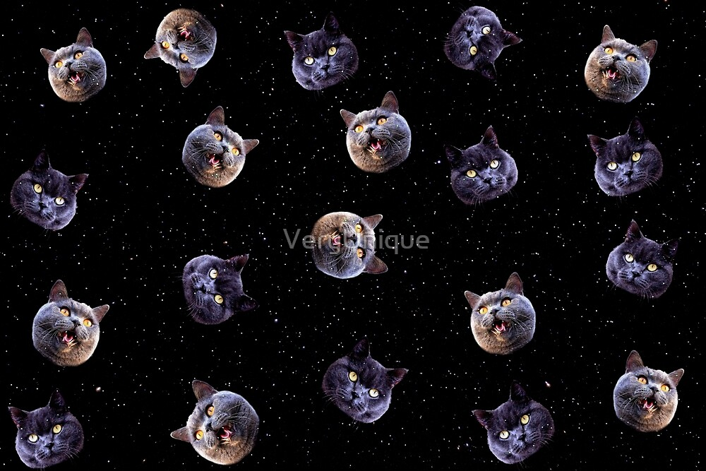 Crazy Cats in Space by VeryUnique