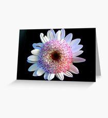 Petite Flower  Greeting Card