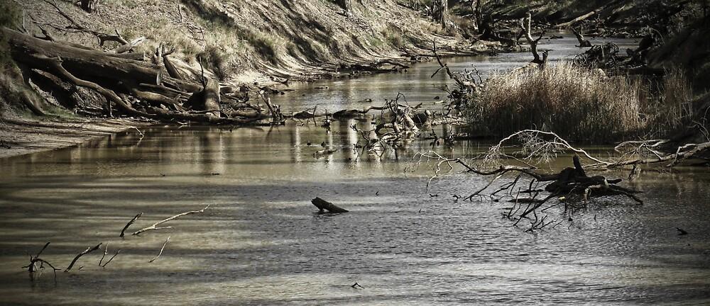 Up the, ummm, river? by Samuel Gundry