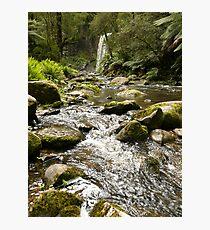 Otway Landscape 3 Photographic Print