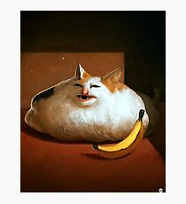 Banana Cat Photographic Print