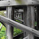 Under The Train Bridge by Tracy Wazny
