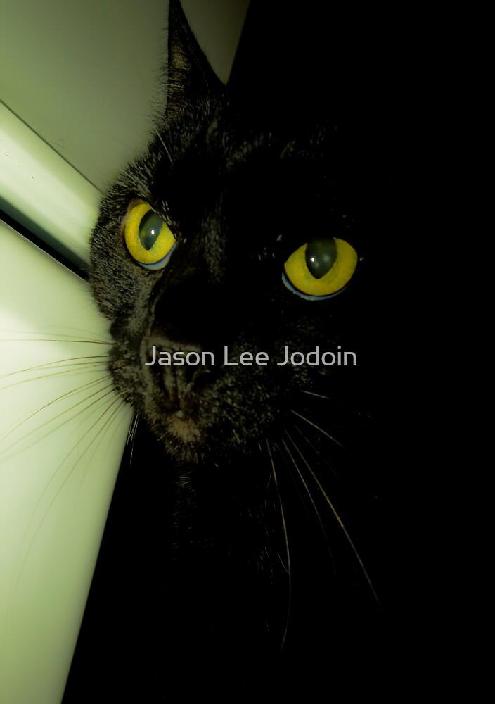 Morrigan by Jason Lee Jodoin