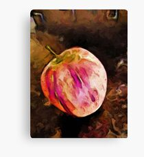 Pink and Orange Apple Canvas Print
