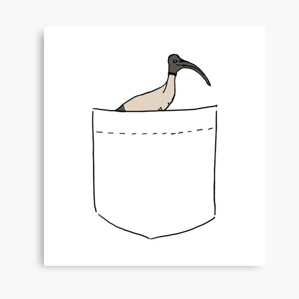 Pocket Bin Chicken Canvas Print