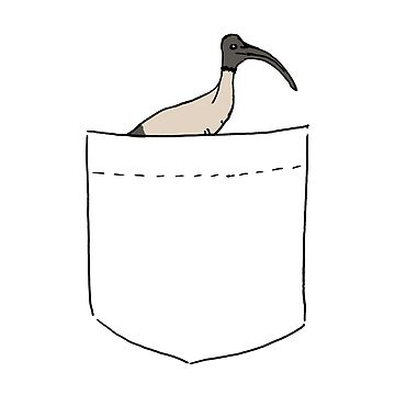Pocket Bin Chicken by strayastickers