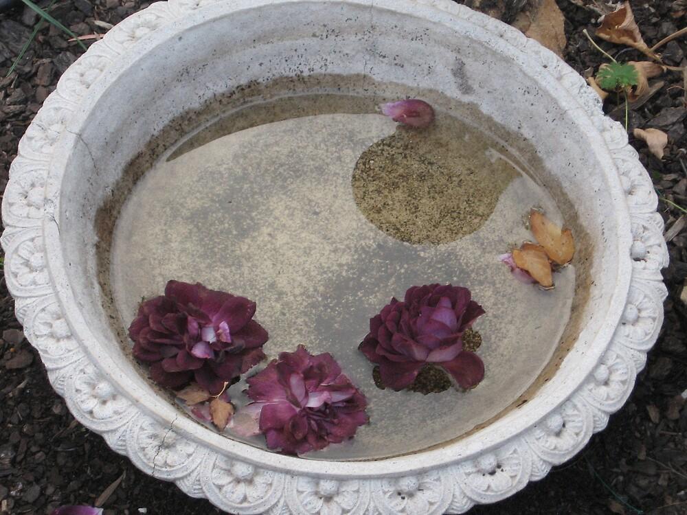 the three roses by angelbabigurl