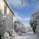 Snowy house and garden by alexcoles