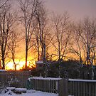 Early Morning Sun and Snow by Gilly1