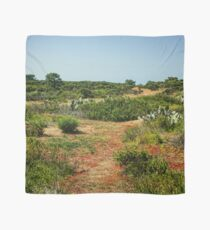 Torrey Pines California - Verdant and Arid Juxtaposition Scarf