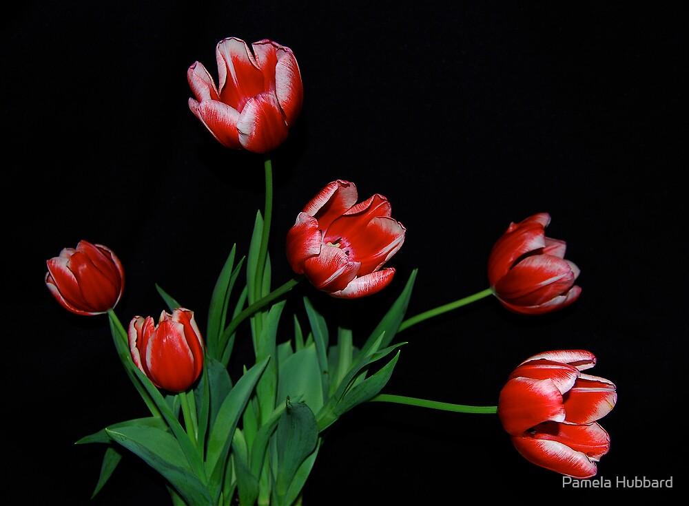Family of Tulips by Pamela Hubbard
