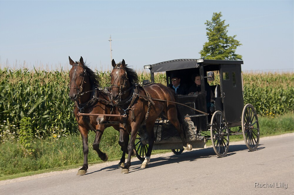 Mennonites on their way to Church by Rachel Lilly