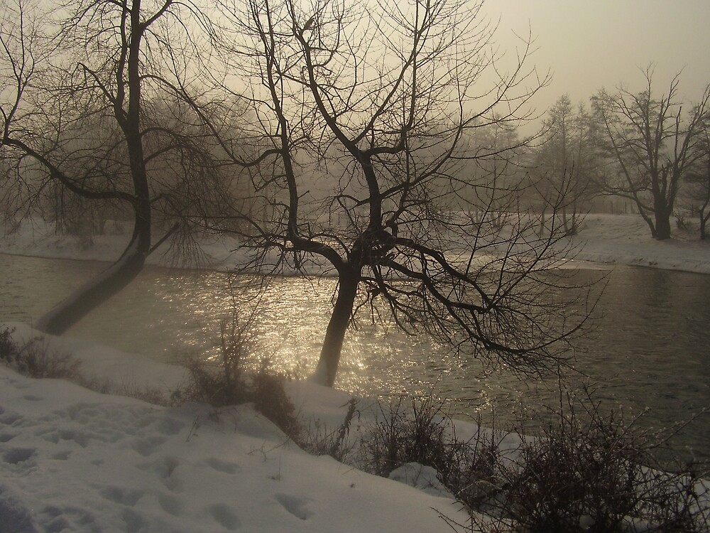 The River Iskar  by tonymm6491