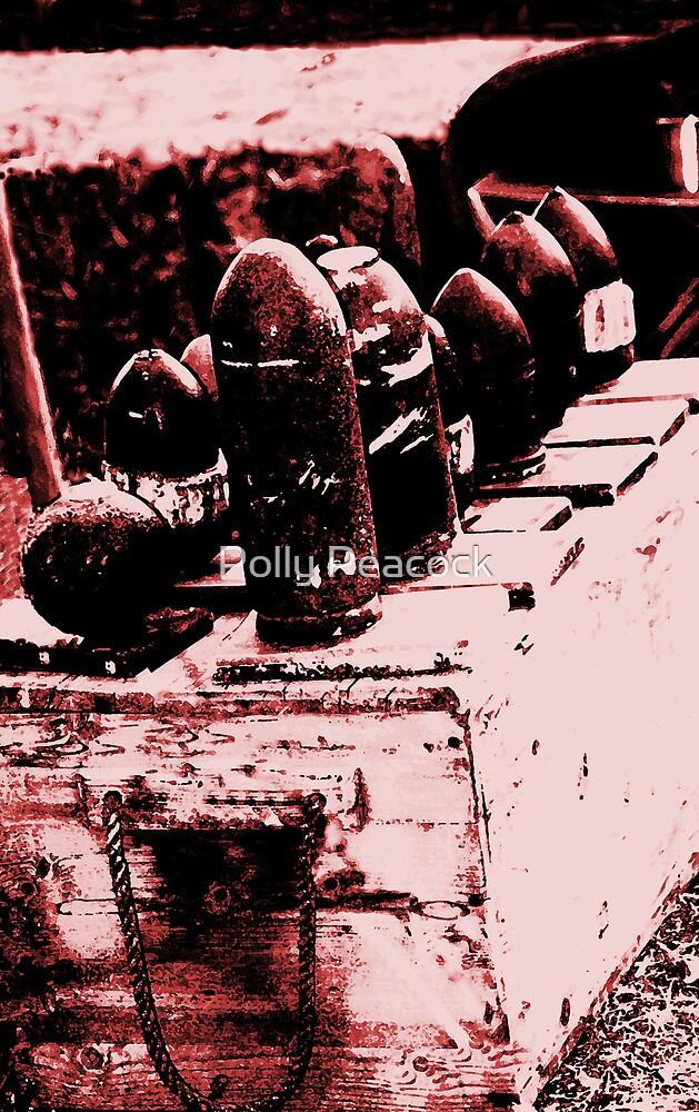 The Artillery  by Polly Peacock