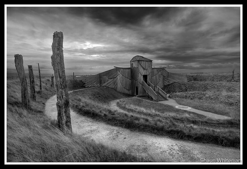 Martin Mere Harrier Hide by Shaun Whiteman