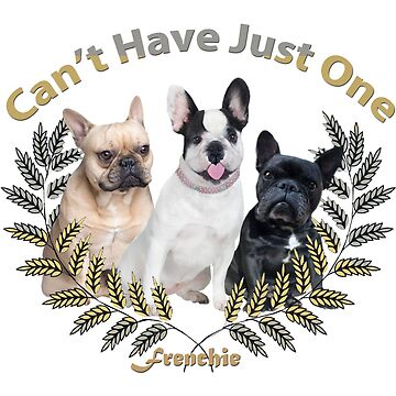 French Bulldog Cannot Have Just One by Friskybizpets