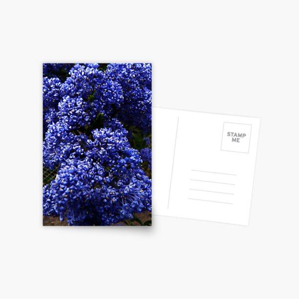 mit kleinen Postkarte