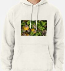 Poplar leaves on the Snayle Pullover Hoodie