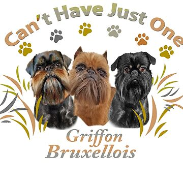 Griffon Bruxellois Cannot Have Just One by Friskybizpets