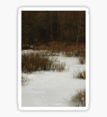 Winter's Bare Beauty Sticker