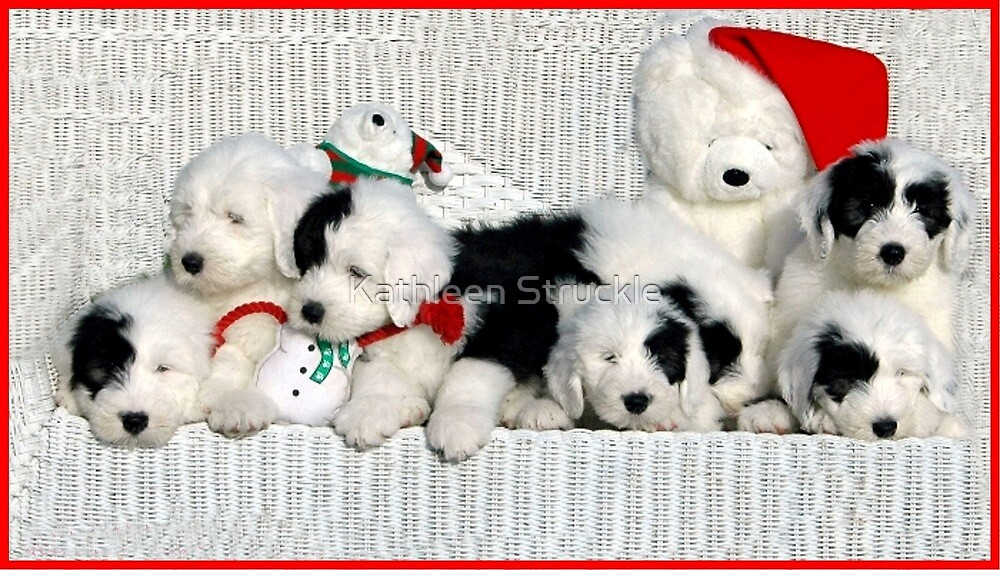 Puppies And Toys by Kathleen Struckle
