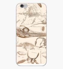 Marine Reptile Engravings Brown iPhone Case