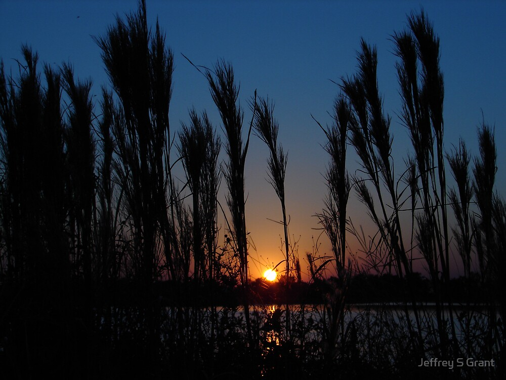 Sunset Over The Florida Everglades by Jeffrey S Grant