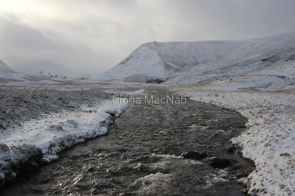 Winter river by Fiona MacNab