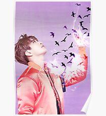 [GOT7] FLYING BIRDS SERIE ~ Youngjae Poster