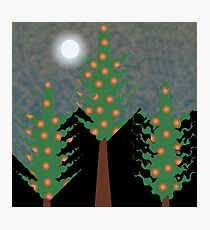 Christmas  Tree and light moon Vector Photographic Print