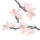Magnolia by KortoGott