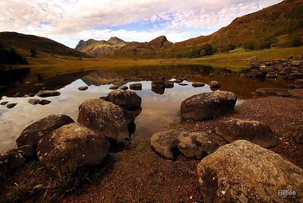 Rocks in Blea Tarn, Lake District, England. by Billlee