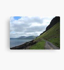 Island road Canvas Print